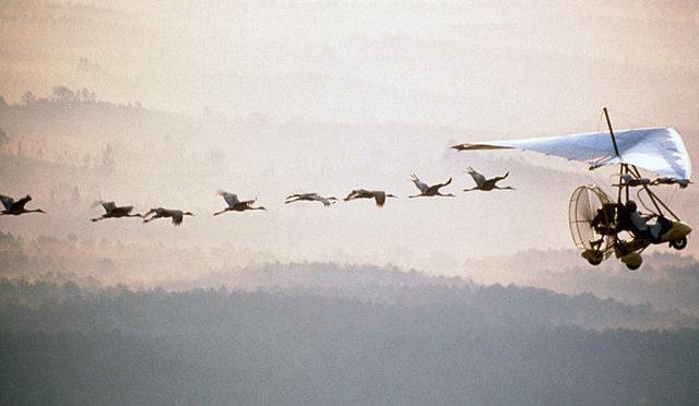 Continuing Migration